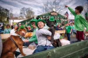 Georgia Mountain Parkway - The annual St. Patrick's Day parade in Downtown Blue Ridge brings out the green