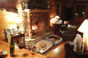dogs on beds by fireplace