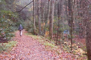 hiker in gilmer county forest