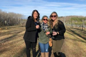 winery visitors in gilmer county, ga