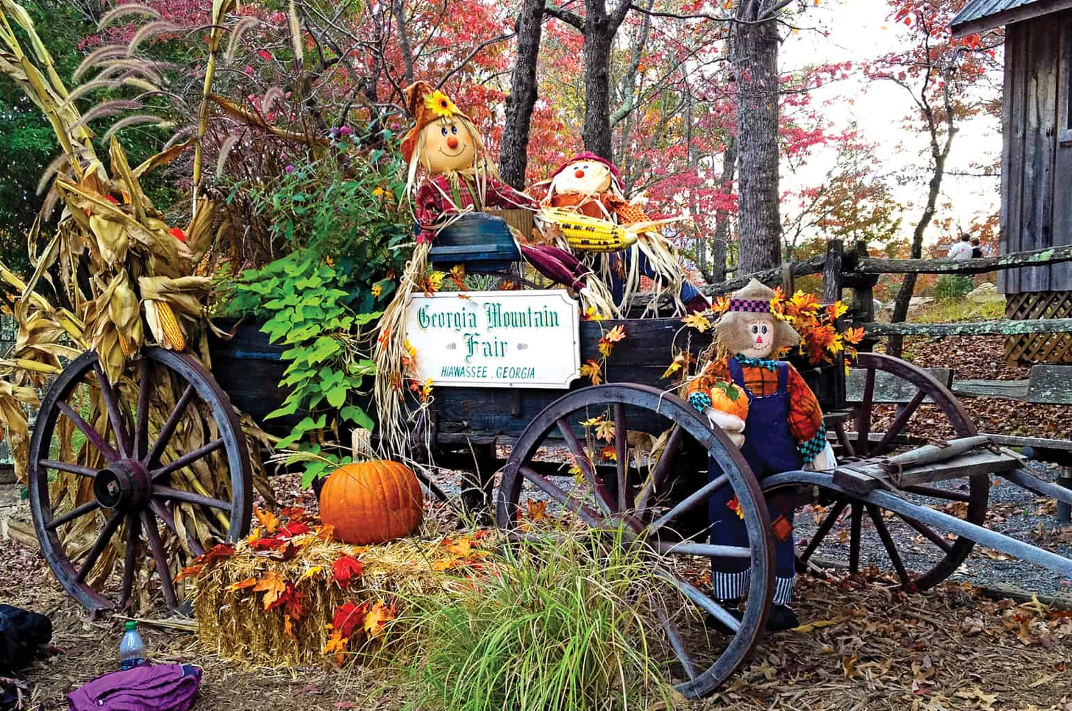 Georgia Mountain Parkway - Old-fashioned buggy welcomes visitors to the Georgia Mountain Fair in Hiawassee, Georgia