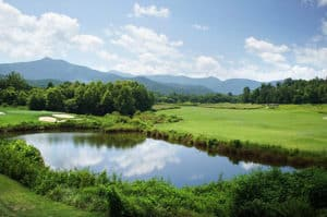 golf course in young harris, ga