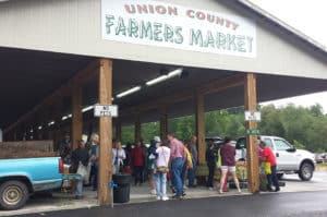 Georgia Mountain Parkway - The Union County Farmers Market is a popular destination from June through October in Blairsville, Georgia