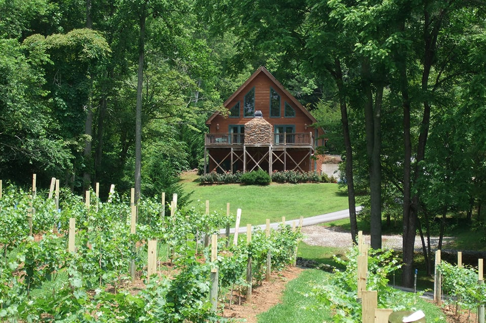 Georgia Mountain Parkway - Guests at Paradise Hills Resort can rent a cabin overlooking the vineyards