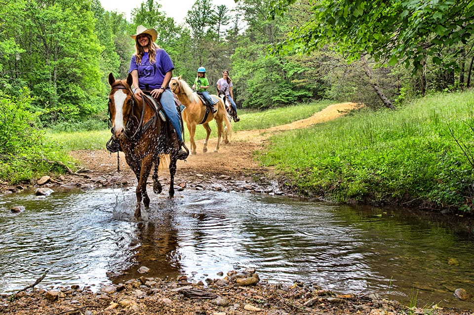Georgia Mountain Parkway - Horseback riders follow a trail at Trackrock Stables in Blairsville, Georgia