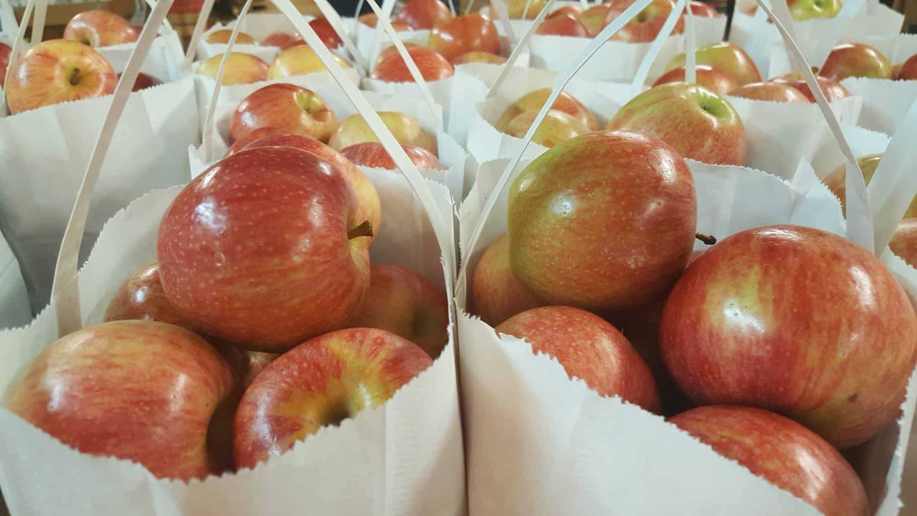 Mercier Orchards Bags of Apples